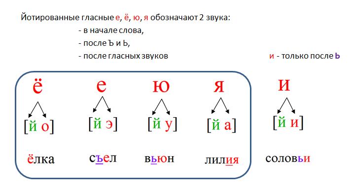 фонетический разбор слова как делать