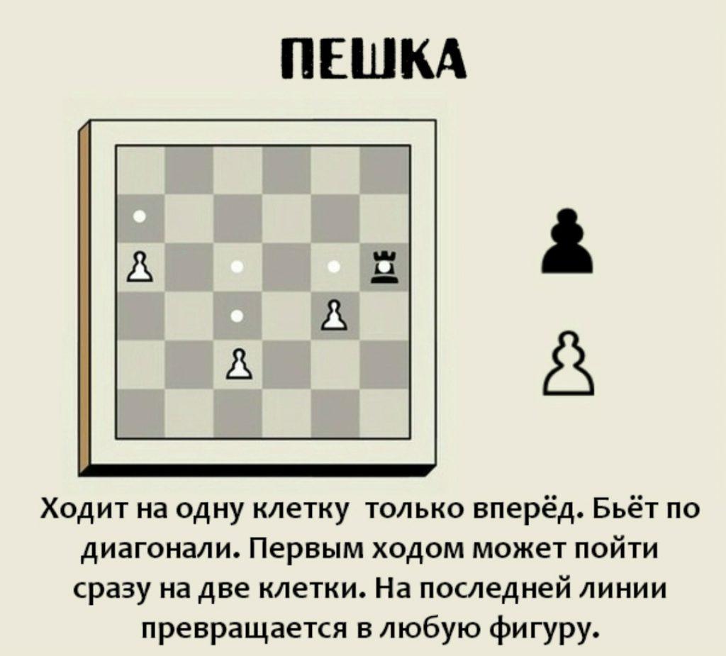 шахматы как ходят фигуры для детей