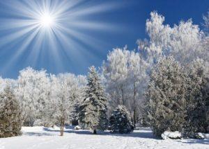 Детские короткие стихи о зиме