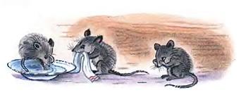 Стихи про мышей: 25 лучших