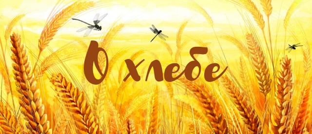 пословицы о хлебе для детей